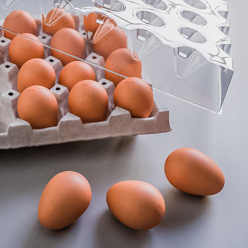 eggtray04bwwd