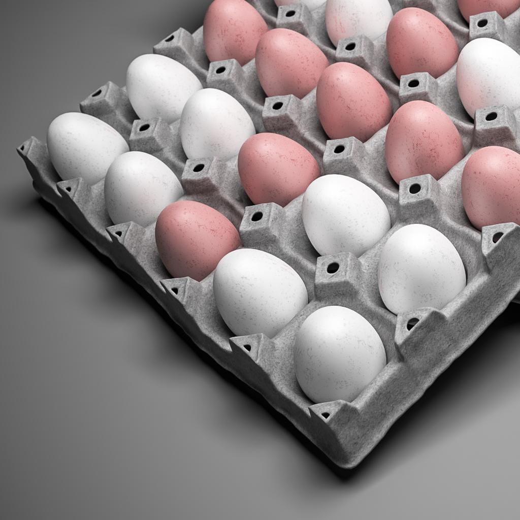 eggtray02d1