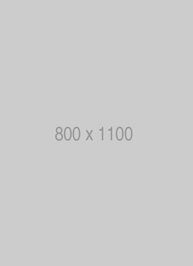 litho-800x1100-ph